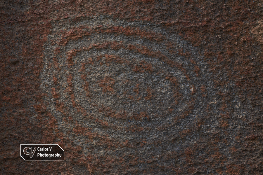 A spiriform petroglyph on volcanic rock at Buracas, La Palma.  © Carlos Vermeersch