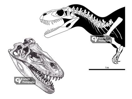 Torvosaurus (2016)