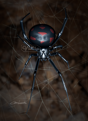 Black Widow (2018)