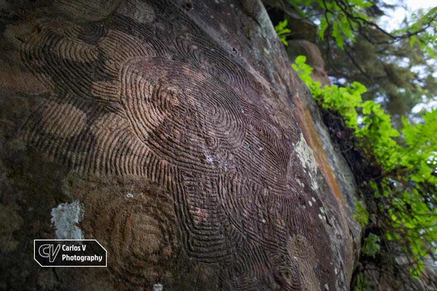 """One of the impressive circular petroglyphs, called """"Rosetón"""", of La Zarza, Garafía, La Palma.  © Carlos Vermeersch"""