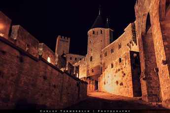 The Walls of Carcassonne