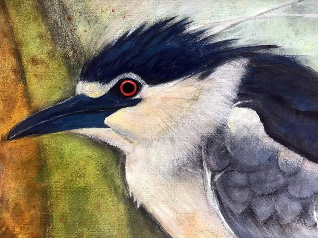 Young Black Crowned Poised