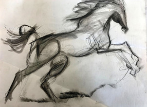 Horse in Motion