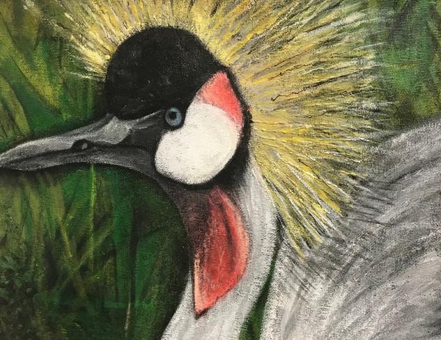 Crowned Gray Crane