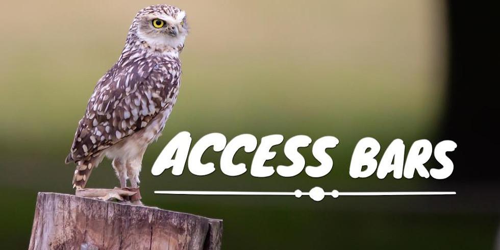 Access Bars practioner