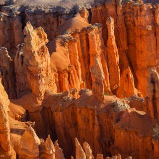 Bryce Canyon Exports-1-24.jpg