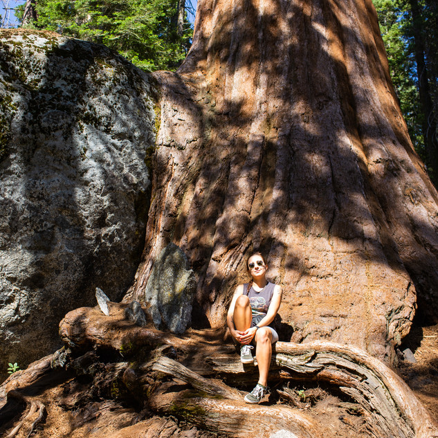 sequoia-national-park-photography-1-6.jp