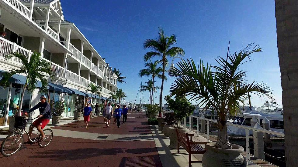 Cruise Ship Port Key West Stock Video