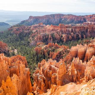 Bryce Canyon Exports-1-7.jpg