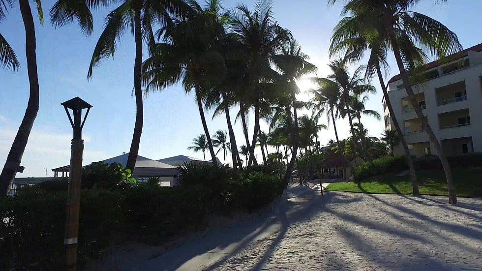 Casa Marina Key West Stock Video