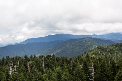 Smokey-Mountains-Photography-1-56.jpg