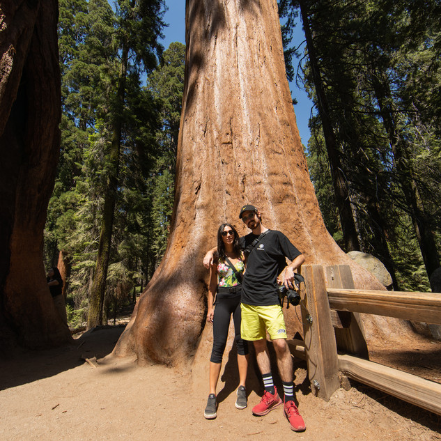 sequoia-national-park-photography-1-15.j