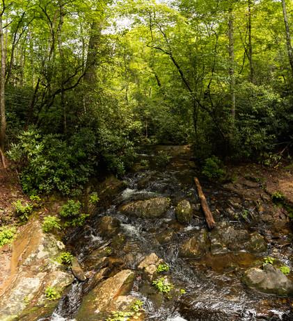 Smokey-Mountains-Photography-1-32.jpg