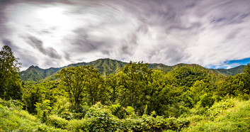 Smokey-Mountains-Photography-1-64.jpg