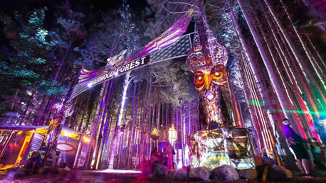 ELECTRIC FOREST TIMELAPSE