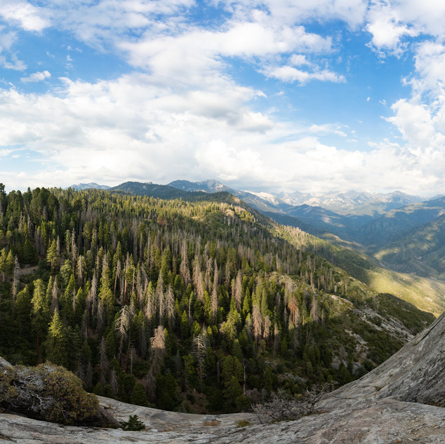 sequoia-national-park-photography-1-49.j
