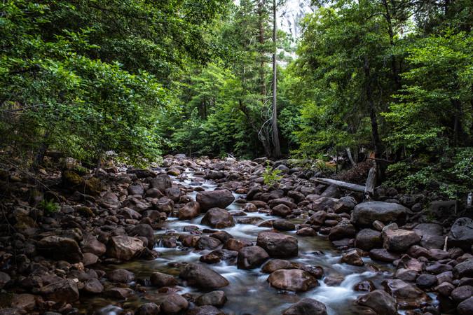 yosemite-national-park-photography-1-48.