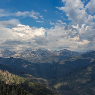 sequoia-national-park-photography-1-12.j