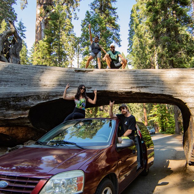 sequoia-national-park-photography-1-44.j