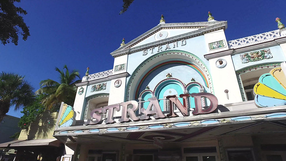 The Strand Key West Stock Video