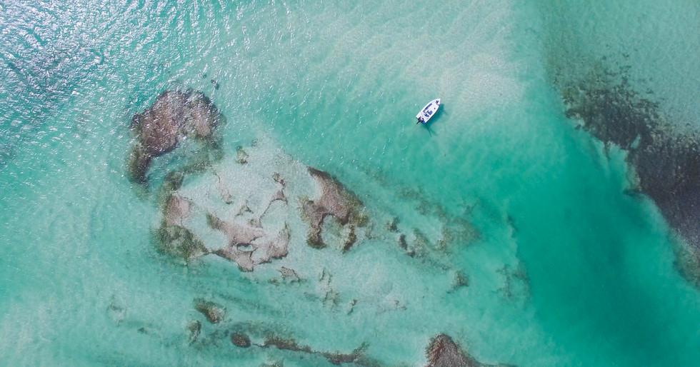Key West Landscape