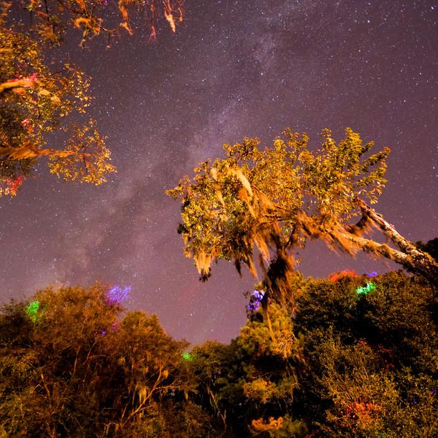 Florida Starscape