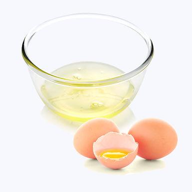 Egg White Liquid