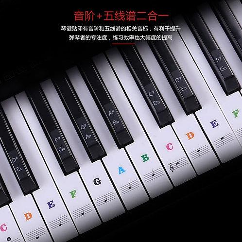 Piano Key Stickers (Colour)