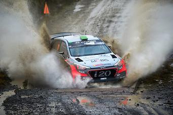 WRC Wales Sweet Lamb stage - Dani Sordo