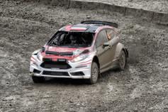 WRC Wales Sweet Lamb stage - Szczepaniak