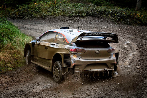 WRC Wales Clocaenog satge - Neuville