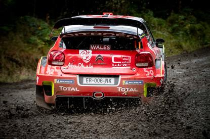 WRC Wales Clocaenog stage - Ostberg