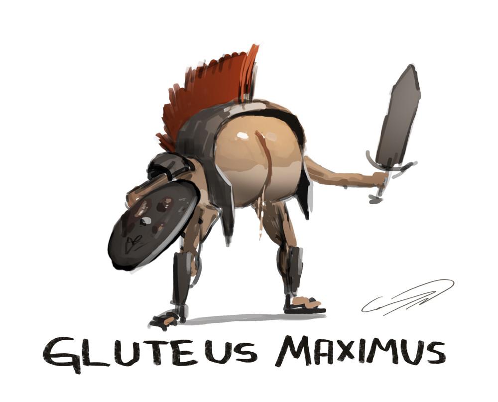 gluteus_maximus_by_connynordlund-d620l07.jpg