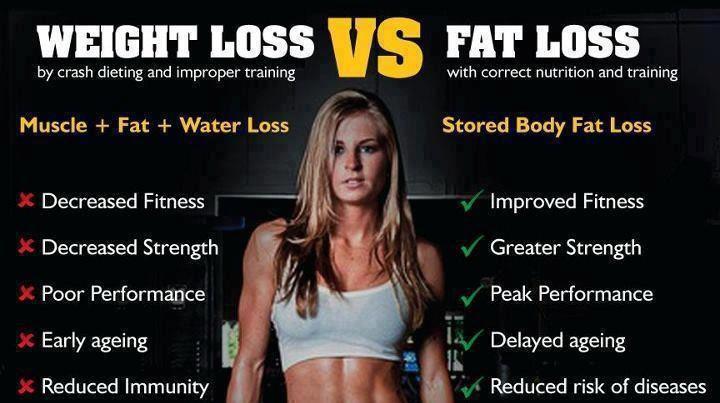 weight-loss-vs-fat-loss.jpg