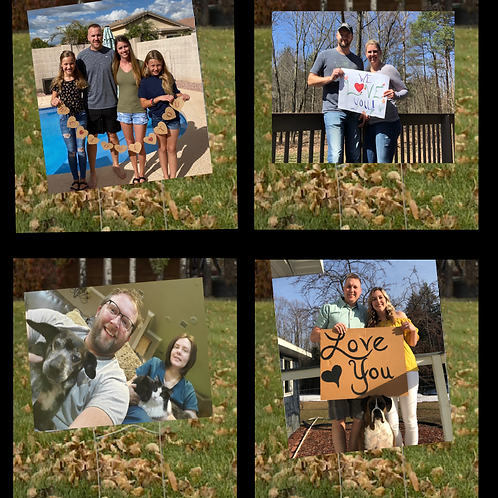 Photo Yard Sign- 4 Pack