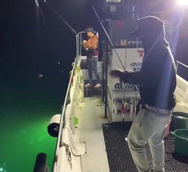 Crazyfish船長のバチコンアジング動画