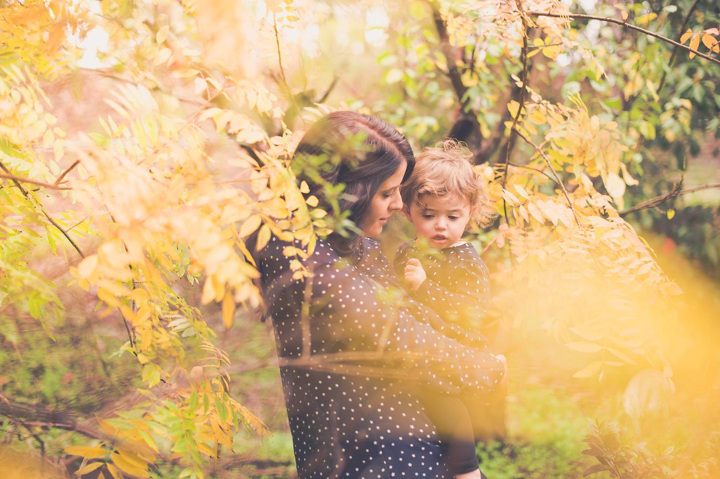 belair adelaide autumn outdoor garden family photo