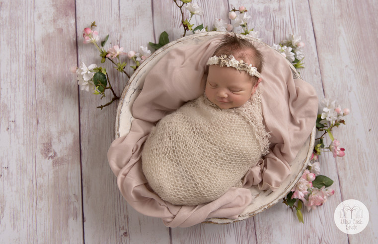 newborn baby studio photo portrait