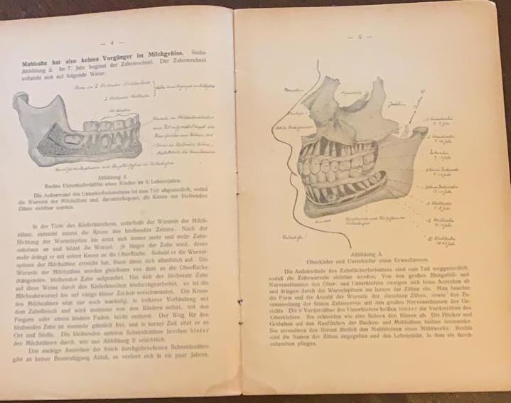 """Livro """"Os Dentes, Orientação para  Público"""""""