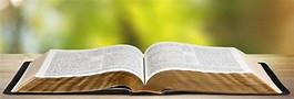 Seminar: Why we Believe, Preach & Teach the Word