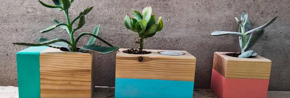 סט של שלישיית אדניות עץ קטנות צבעוניות