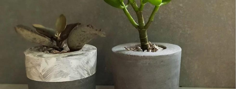 סדנת עיצוב עציצי בטון בזום 24.9