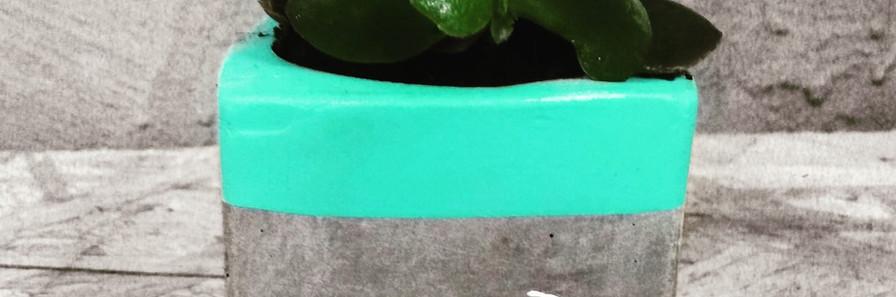עציצון בטון | עיצוב בבטון