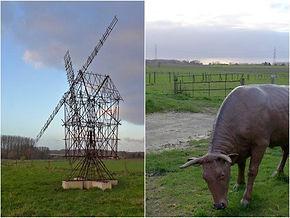 De Blik van Bruegel, met 'Study of a Windmill' van Gijs Van Vaerenbergh en 'Kuh' van Lois Weinberger