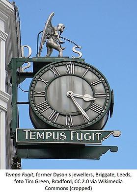 Tempo Fugit Dyson Leeds Tim Green.jpg
