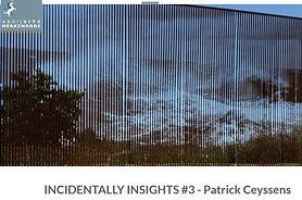 INCIDENTALLY INSIGHTS #3, Patrick Ceyssens