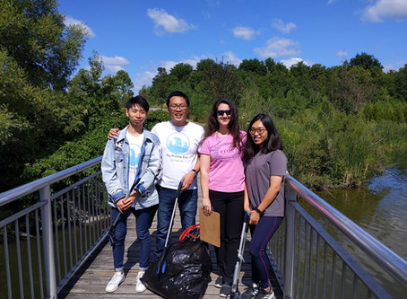 Cleanup in North L'Amoreaux Park