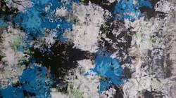Blue Storm  AN2015
