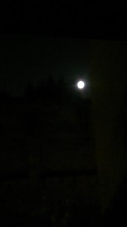 Moon Light AND.2014-031.jpg