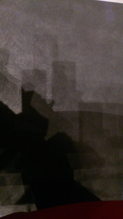 Blue and Grey Shadow  AN2015-085.jpg